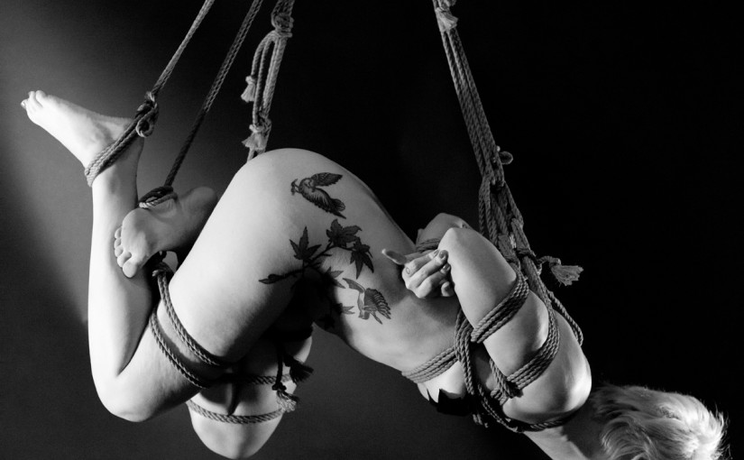 Shibari Dream